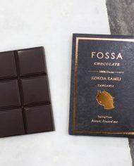 Fossa-Tanzania-100-Styled