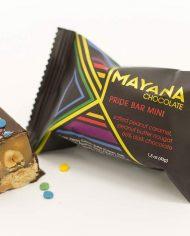 Mayana-Pride-Mini-Bar_styled
